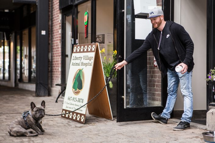 reluctant vet visitor for professional branding photography 0O7C8652